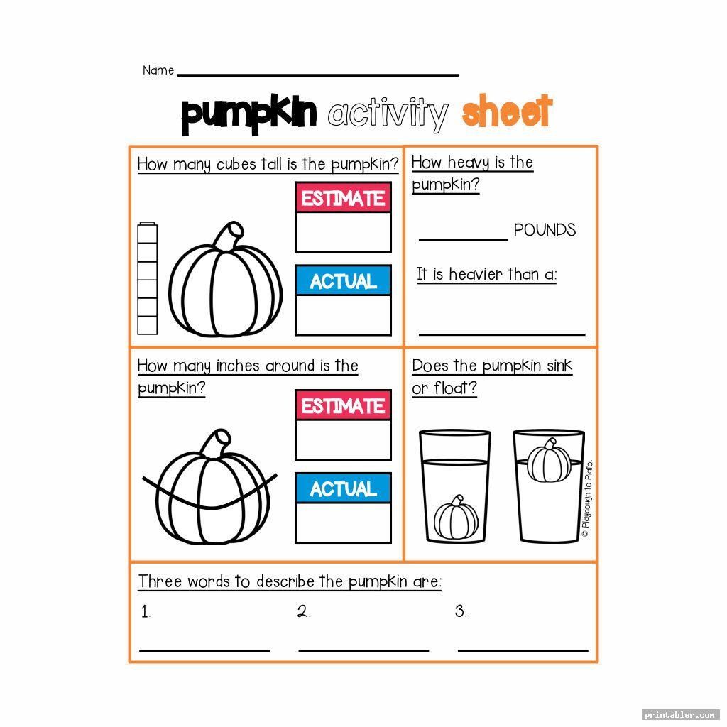 Pumpkin Investigation Worksheet Printable
