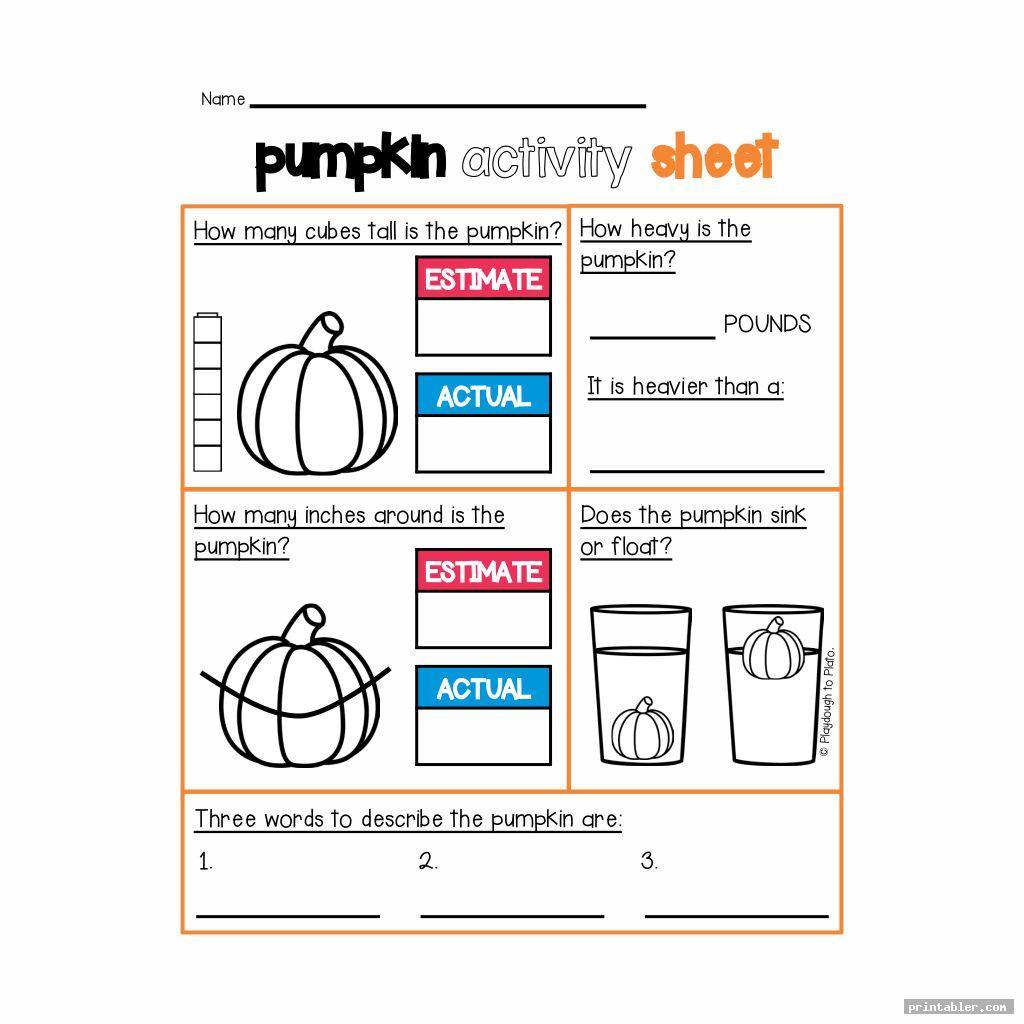 Pumpkin Investigation Worksheet Printable