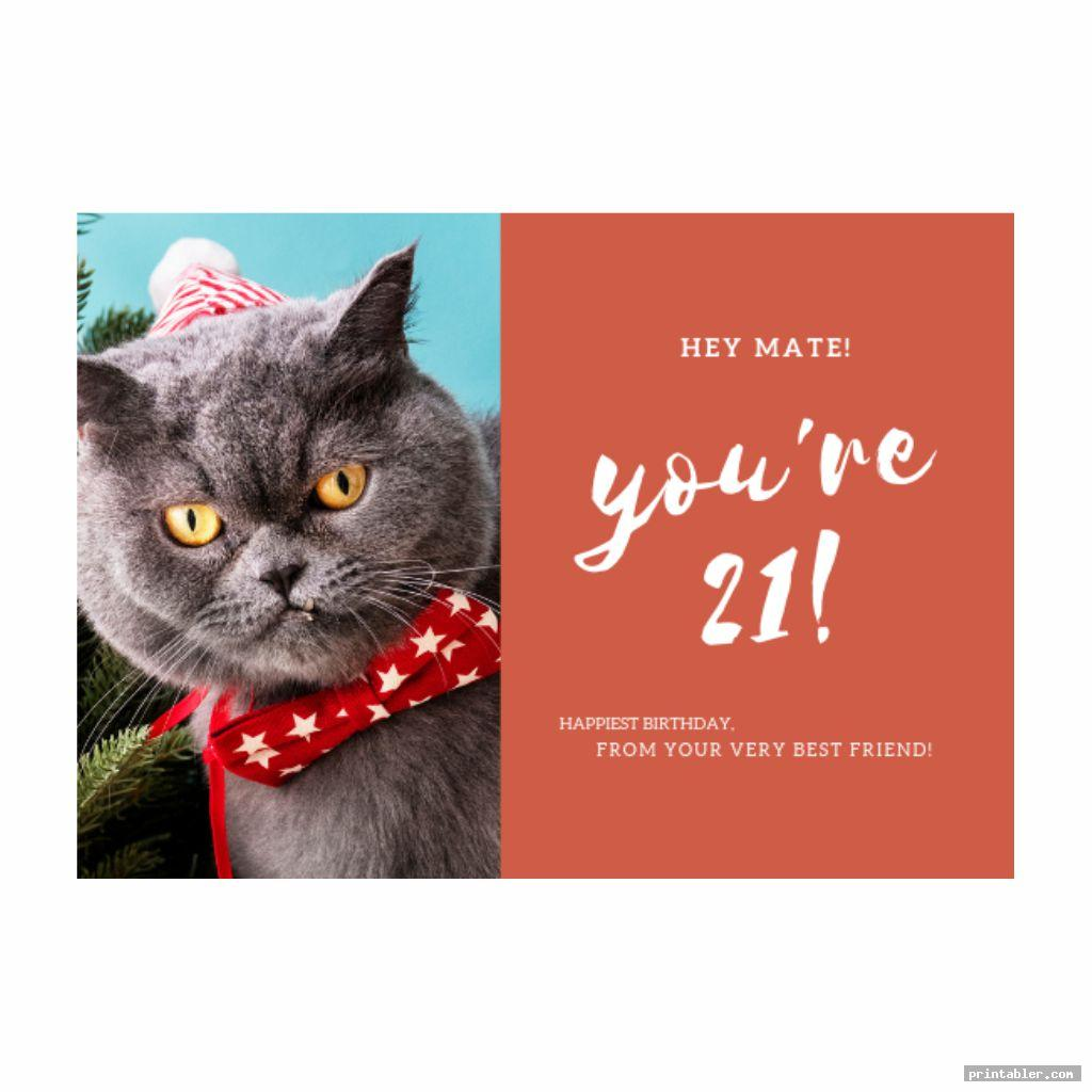 grumpy cat birthday card printable image free