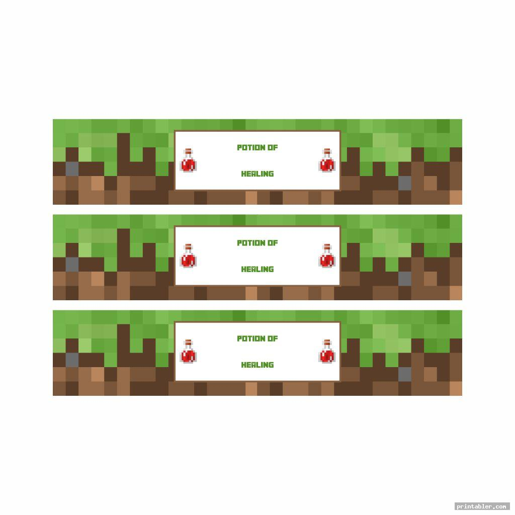 photo about Printable Minecraft called Minecraft Food stuff Labels Printable -