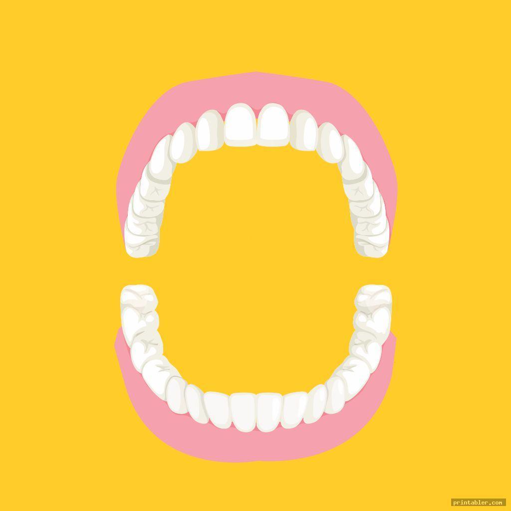 blank tooth chart printable full sheet