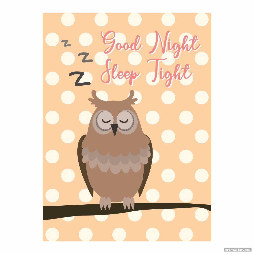 owl nursery printables image free