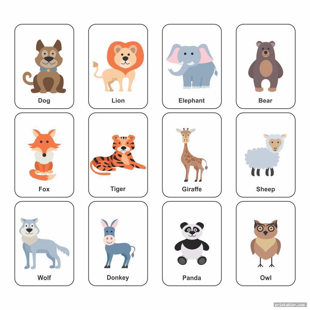 printable animal flash cards image free