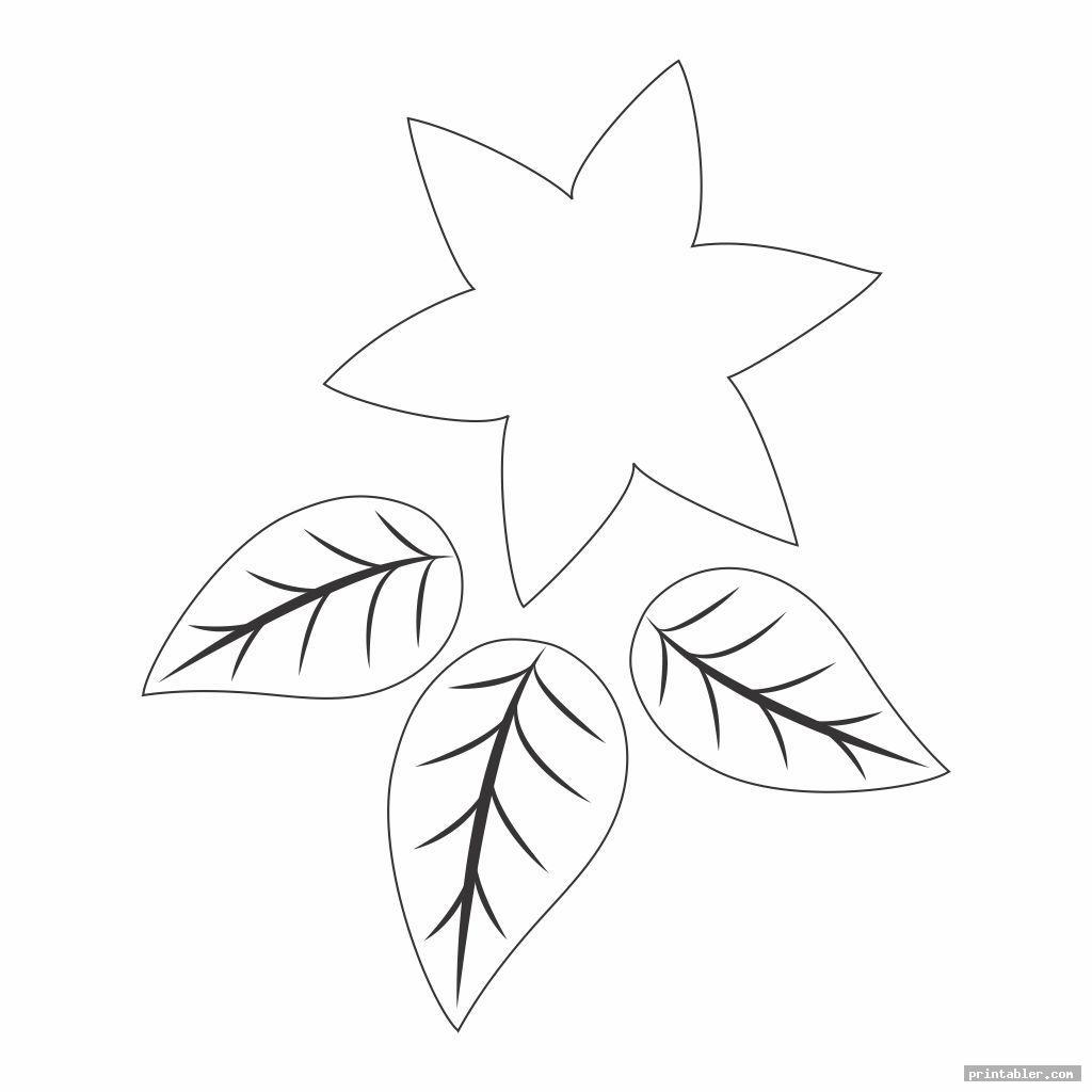 cute poinsettia leaf template printable